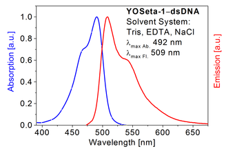 Absorption and emission spectrum of YOSeta-1 in presence of dsDNA