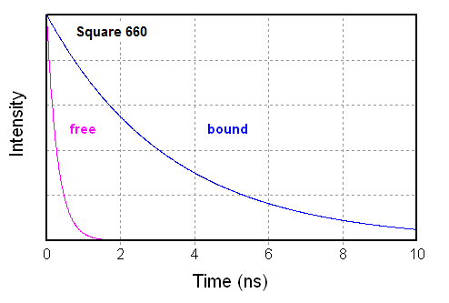 Comparison of the intensity decays of Square-660-NHS before and after binding to protein or oligos