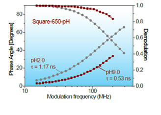 Frequency–response curves (phase angle and demodulation) of the Square-650-pH-IgG conjugate (D/P = 0.8) at pH 2.0 and pH 9.0